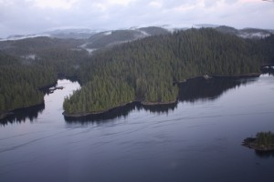 Tongass National Forest from the air
